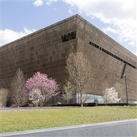 National Museum of African American History - St.P