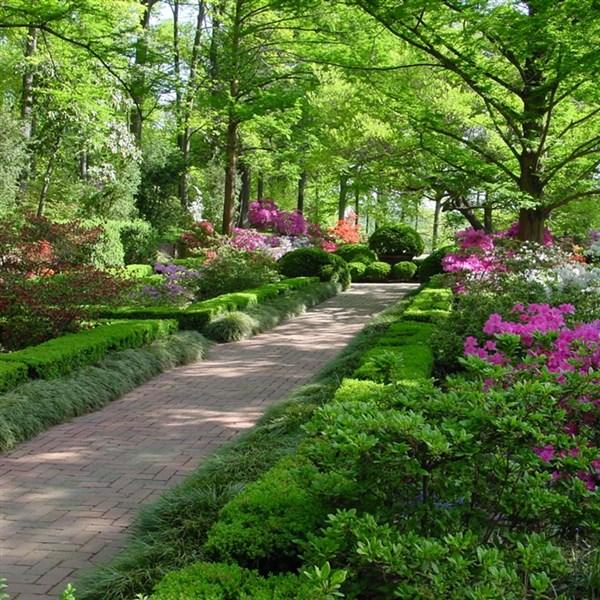 National Arboretum Gardens