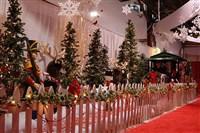 view images pennsylvannia christmas show
