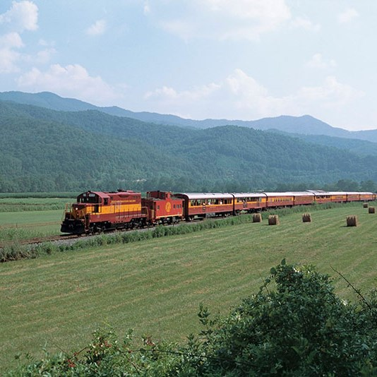 Smoky Mountain Train Ride & Biltmore Flowers
